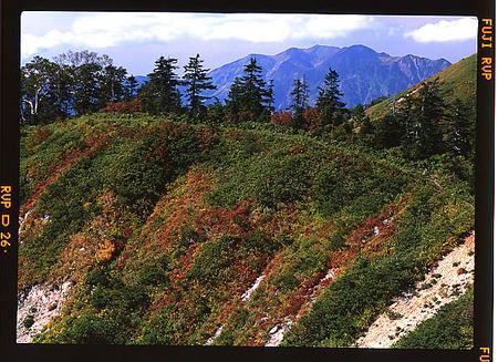 奧三方岳と別山