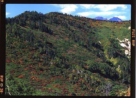 奧三方岳、御前峰と剣ケ峰がわずかに見える