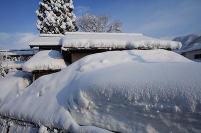 吉野谷村 雪が解けたら田畑がある