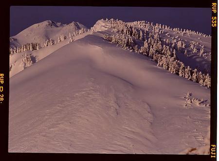 奧三方岳と白山
