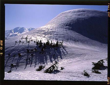奧三方岳山頂と白山