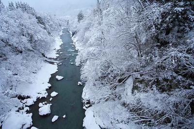 自宅近くの手取川の様子