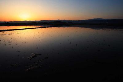 柴山潟近くの水田から夜明け直山