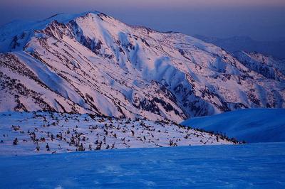 室堂から夕照の別山