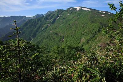 薬師山から白山方面