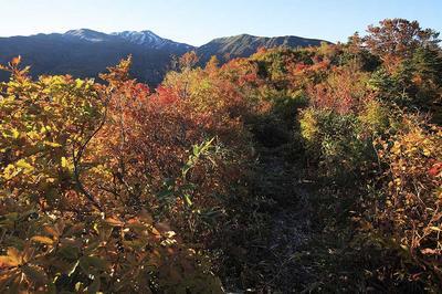 長倉山付近から四ツ塚山
