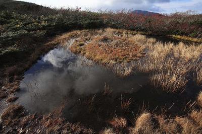 赤兎山の赤池湿原と大長山