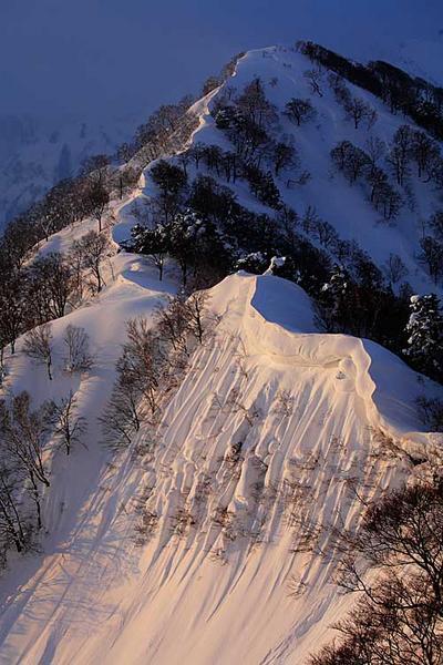 しかり場付近から長倉山