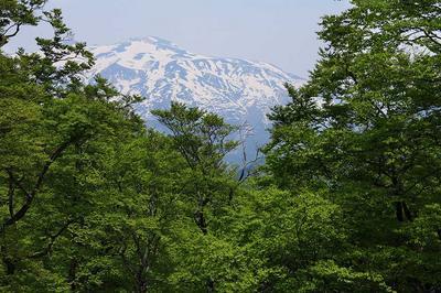 小原峠から白山