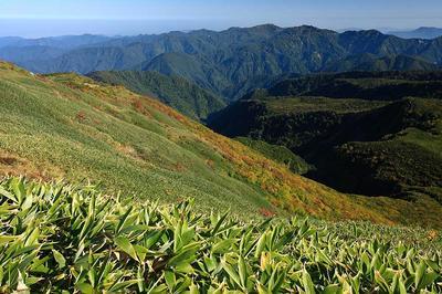 天池付近から白山北方の笈ケ岳方面