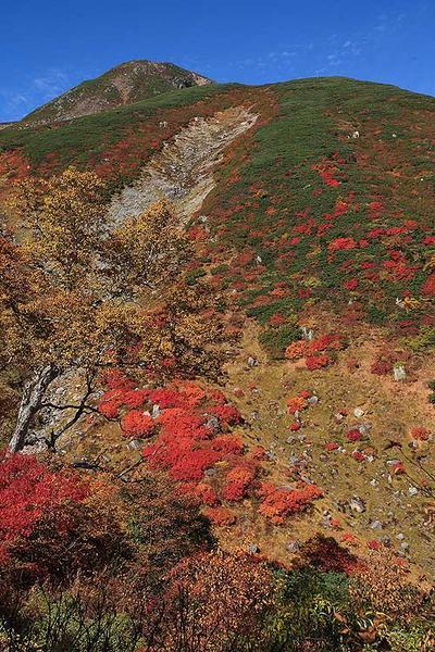 カンクラ雪渓と御前峰