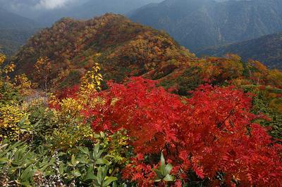 大倉山を見下ろす