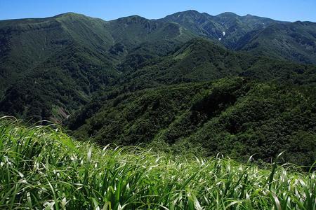 鳴谷山から白山