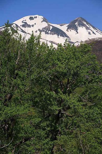 大白川から白山