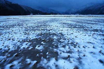雪が来た田んぼ
