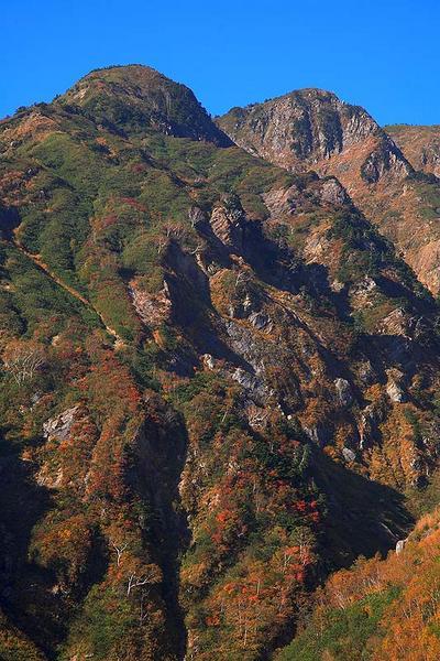 湯ノ谷林道から釈迦岳