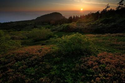 小桜平の夜明け