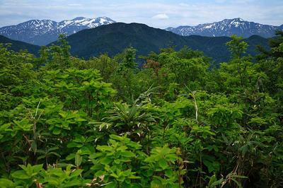 伏拝から見た白山