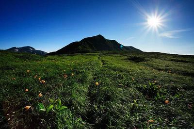 別山平の登山道