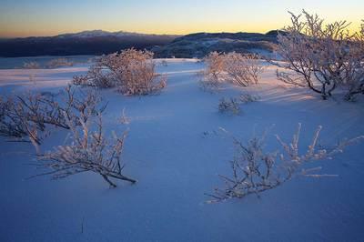 銀杏峯山頂付近から見た朝の白山