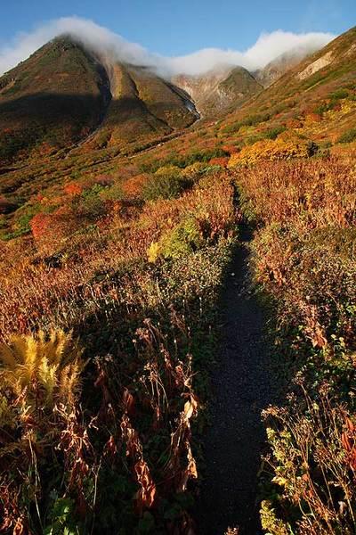 秋の御花松原