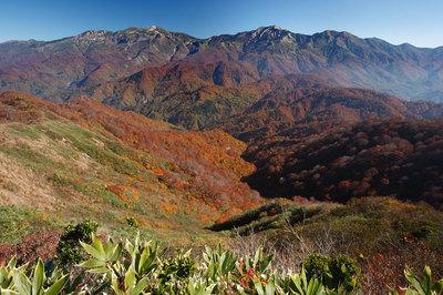 赤兎山から見た白山