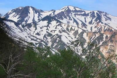 間名古の頭のトラバース道から見た白山